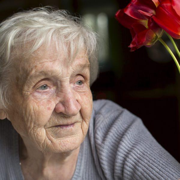 béguinage personne âgée