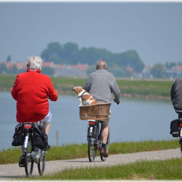 senior santé vieillir sport regroupe
